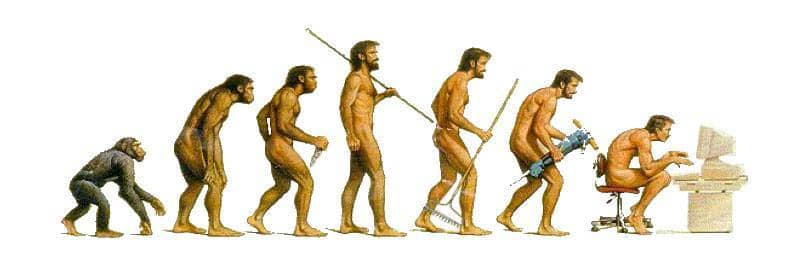 Evolution to Sitting in front of a Computer